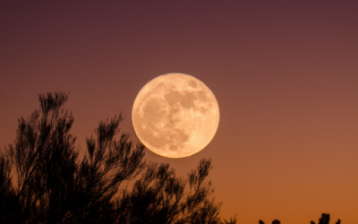 De invloed van de volle maan als je hooggevoelig bent
