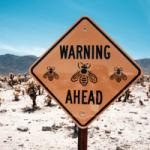 Hoogsensitief? Wees alert bij bijen- en wespensteken!