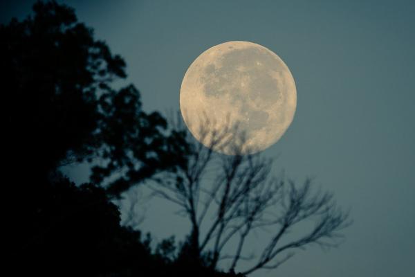 De energie van de volle maan van december 2018