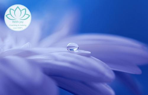 Meditatie die je helpt bij warmte en je verfrist en verkoelt