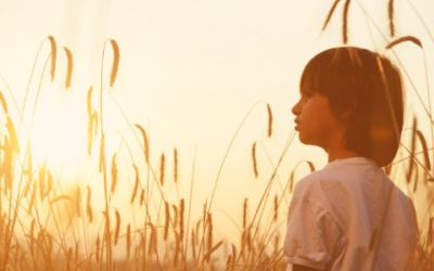 Tips voor ouders van een hooggevoelig kind