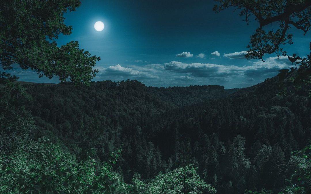 De energie van de volle maan van augustus 2019 in het teken waterman