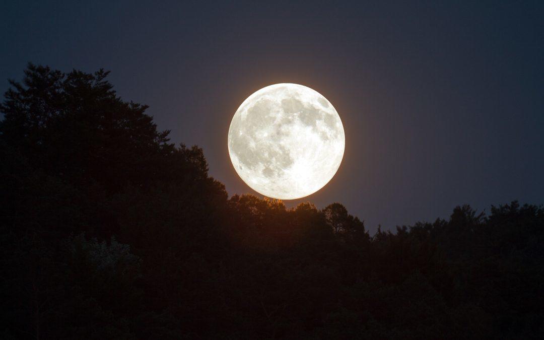de energie van de volle maan van november