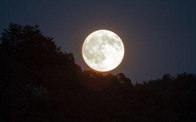 De energie van de volle maan in november 2019 in het teken Stier