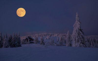 De energie van de volle maan van februari 2020 in het teken Leeuw