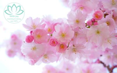 Liefdevolle lentemeditatie die je ontspanning en zachtheid brengt