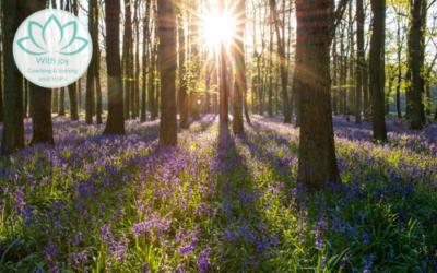Meditatie die je rust geeft en je helpt om je veilig te voelen