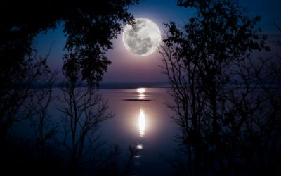 De energie van de volle maan van 22 augustus in het teken Waterman
